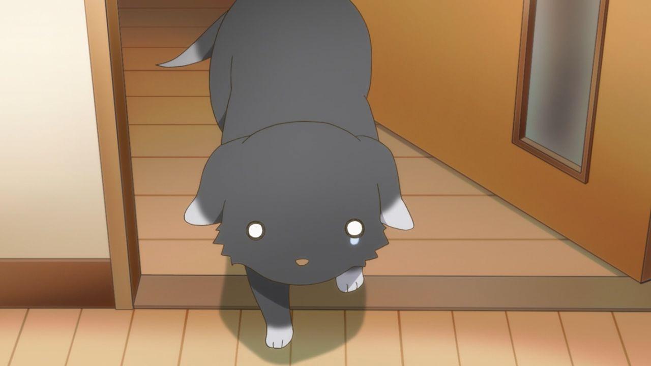 Скриншот *Как содержать мумию / Как вырастить мумию / Miira no Kaikata [Сезон 1, Серия 1-12 из 12] 2018*