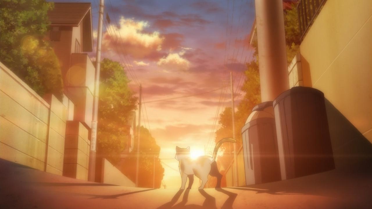Скриншот *Волейбол!! / Haikyuu!! [Сезон 1, Серия 1-25 из 25] 2014*